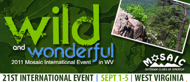 2011 Mosaic International Event Banner